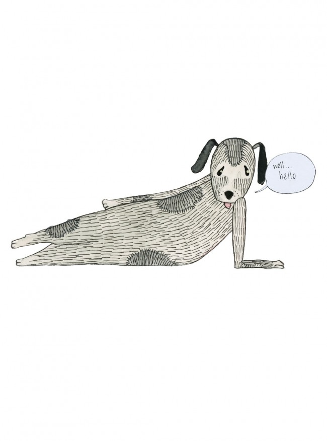 Dog Centerfold